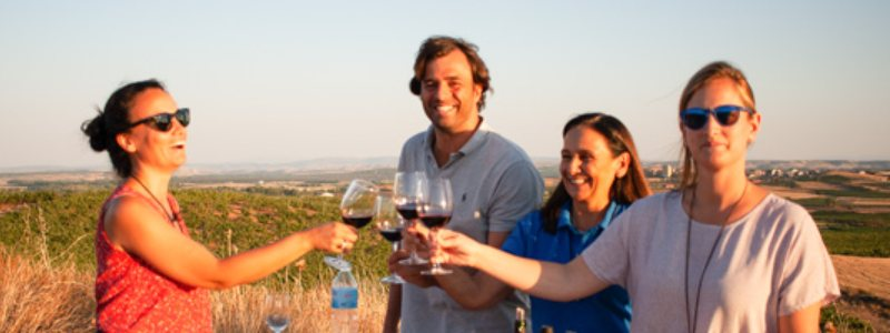 Picnic en viñedo con Alonso del Yerro